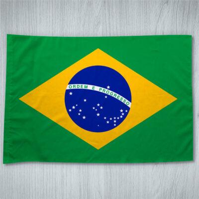 Bandeira do Brasil em Portugal