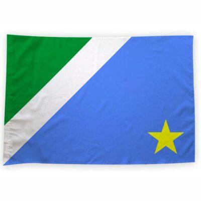 Bandeira Mato Grosso do Sul ou personalizada 70x100cm comprar