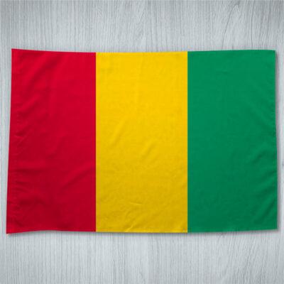 Bandeira Guiné em portugal