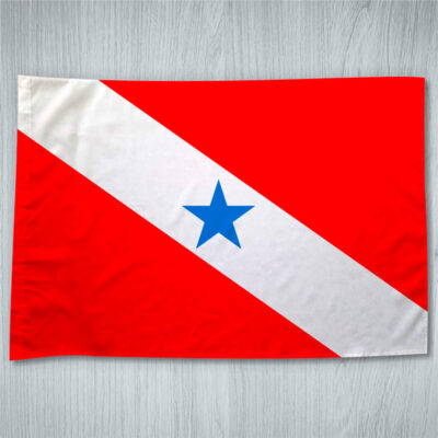 Bandeira Pará ou personalizada com sua imagem
